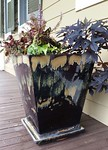 Pair of large planters