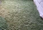 "Green shag rug 135"" x 98"""