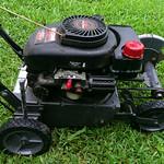 Gas powered edger