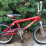 Young boy's bicylce