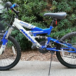 Clean, young boy's bicycle