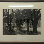 One of several Walter Platt Charleston original, framed photos.  Offered at a reduced price.